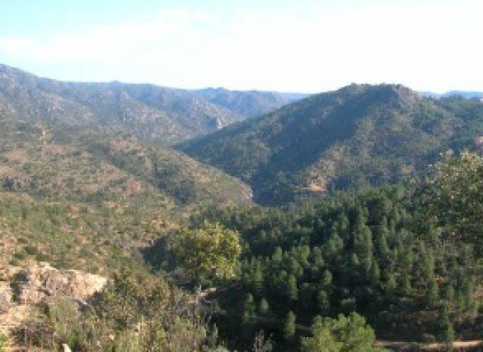 Talleres y actividades infantiles celebran el Día Europeo de los Parques en Sierra de Cardeña-Montoro