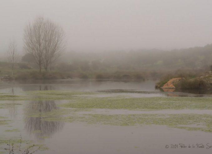 La niebla atrae a la fotografía en Los Pedroches