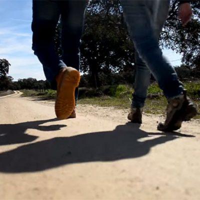 El reportaje 'Así es un fin de semana en El Valle de los Pedroches' [vídeo]