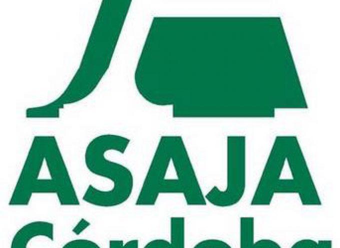 Asaja lamenta la reducción de servicios en la Oficina Local Agraria de Villanueva de Córdoba