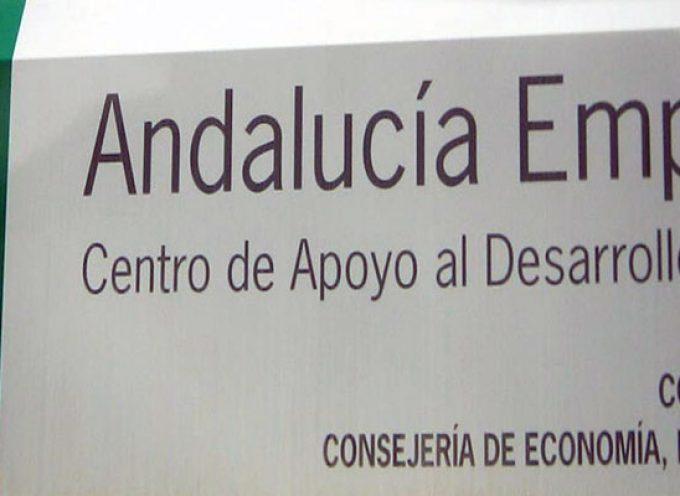 Se ponen en marcha 49 empresas en la zona Guadiato – Los Pedroches a través de los puntos PAE