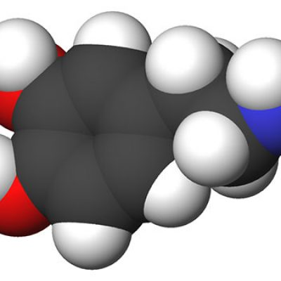 La dopamida es la culpable