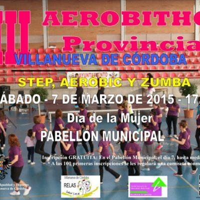 VIII Aerobithon Provincial en Villanueva de Córdoba