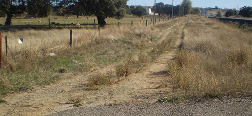 Adjudicado el proyecto de recuperación de la ruta del tren y dehesa de Añora