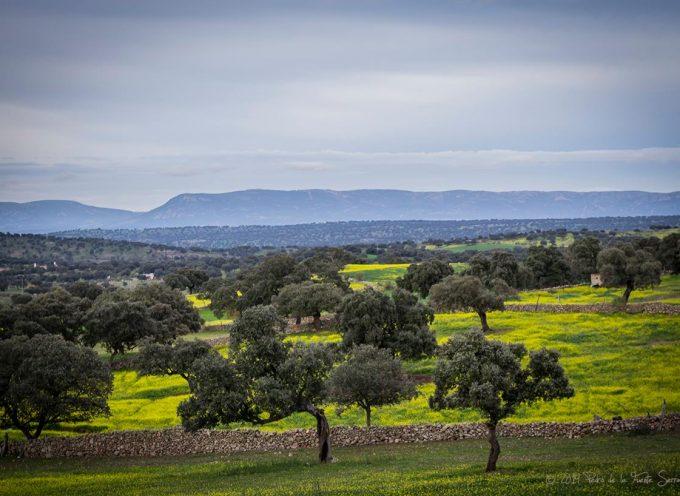 Un taller de participación ciudadana en Pozoblanco para la creación de un 'catálogo de paisajes'