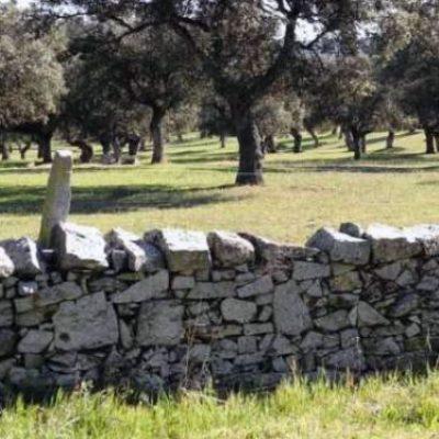 El uso de la piedra en Los Pedroches, por Jorge A. Moreno