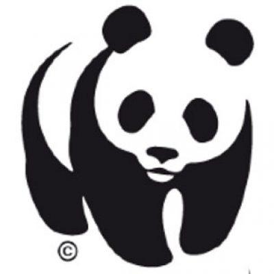 WWF presenta una guía para salvar las 'pendientes de biodiversidad' de los olivares de montaña