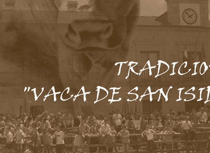Se aproxima la celebración de la Vaca de San Isidro de Dos Torres