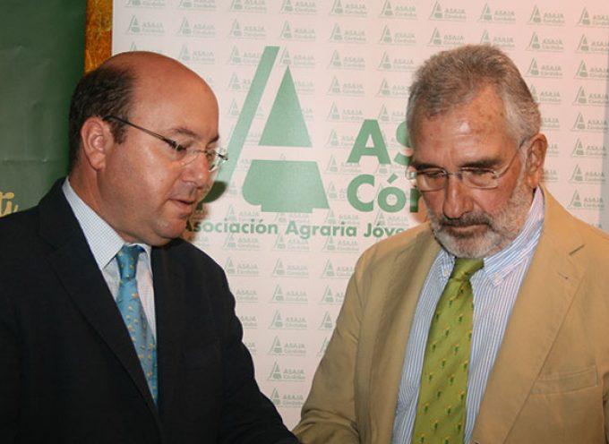 Asaja Córdoba pide ayudas para el olivar en pendiente y de baja producción
