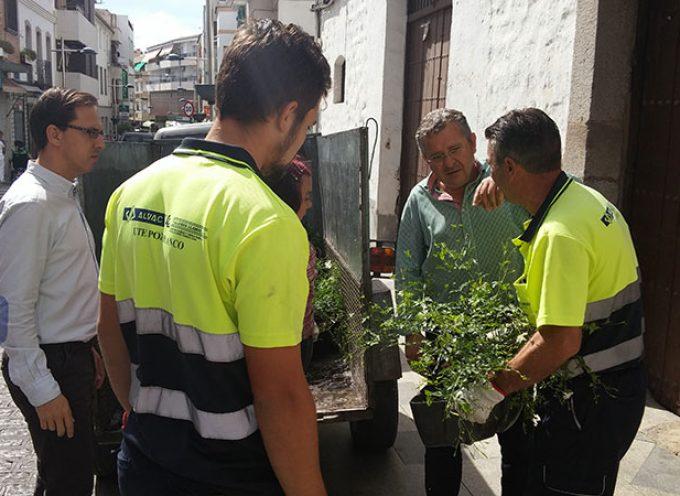 Preparativos de feria en Pozoblanco: el transporte, la seguridad y las flores