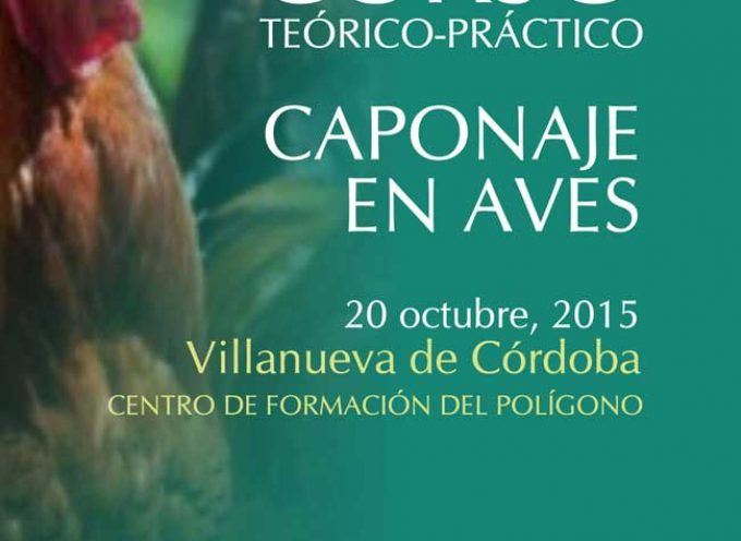 Curso de Caponaje en Aves en Villanueva de Córdoba