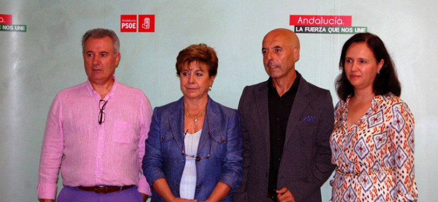 El PSOE reclama un incremento y una racionalización de las paradas de tren en Los Pedroches