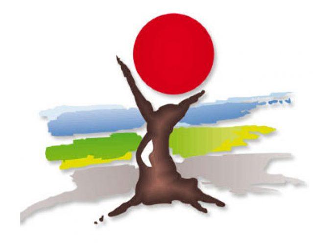 Las decisiones de las Comisiones de Turismo, Cultura y Deportes, y de Hacienda y Desarrollo Económico, de Mancomunidad