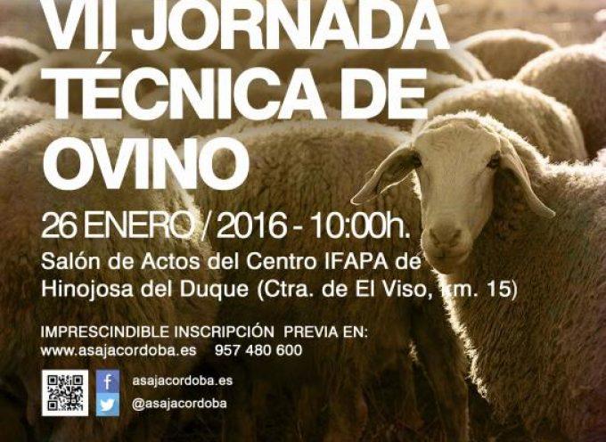 Asaja abordará en su VII Jornada Técnica de Ovino el mercado de la lana, la ganadería ecológica y la sanidad animal