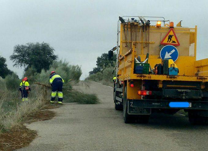 Carreteras estrechas y retamas invadiendo la carretera