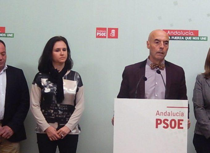 El PSOE reclama más trenes, mejores horarios y más promoción de la estación del AVE de Villanueva de Córdoba