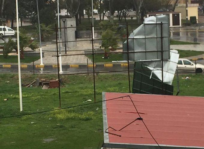 Consecuencias de las fuertes rachas de viento en Los Pedroches (actualizado)