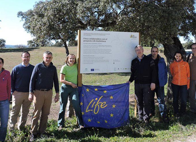 Una delegación de la Comisión Europea visita en Los Pedroches dos fincas de la Red del Life bioDehesa