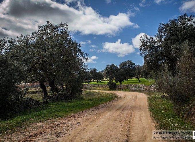 Inversión del Plan de Caminos para 2016 en Los Pedroches