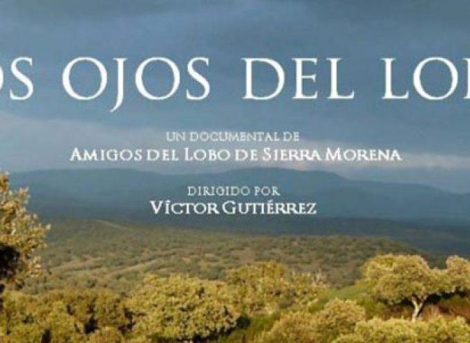 Presentación de la película 'Los ojos del Lobo' en Cardeña