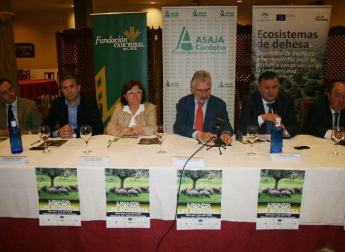 Asaja Córdoba traslada la necesidad de mejorar la norma de calidad del ibérico