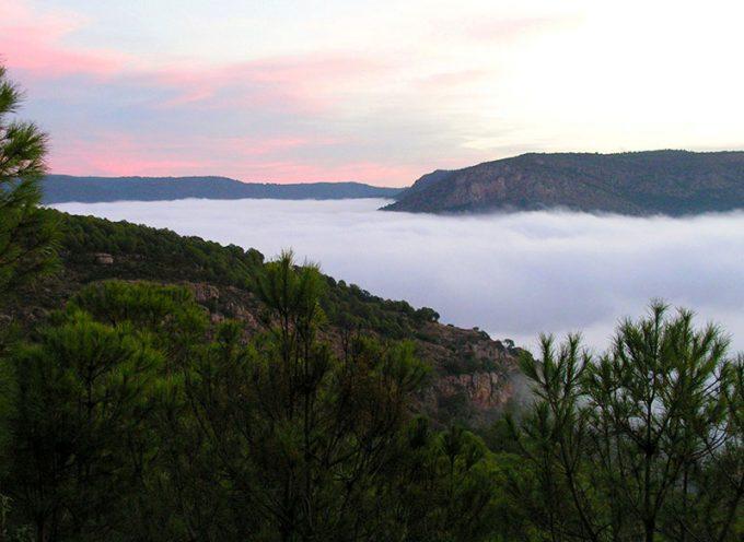 Medio Ambiente organiza actividades en el Parque Natural Sierra de Cardeña y Montoro