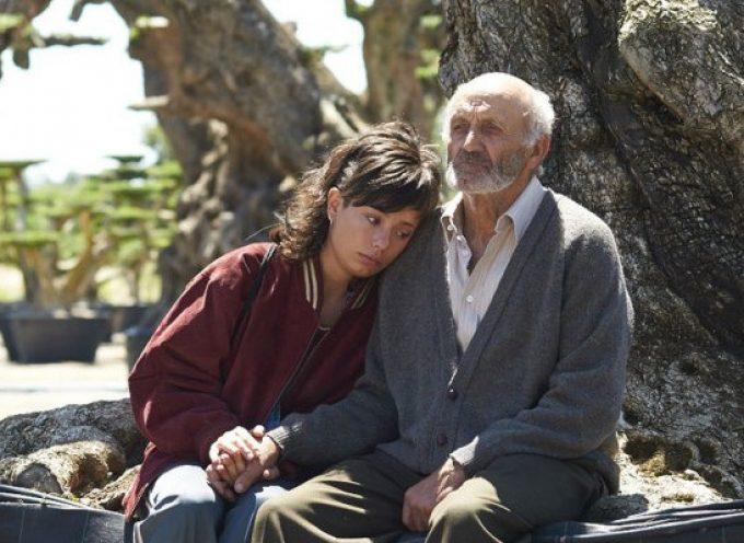 Olivarera Los Pedroches participa en el preestreno de la película 'El Olivo'