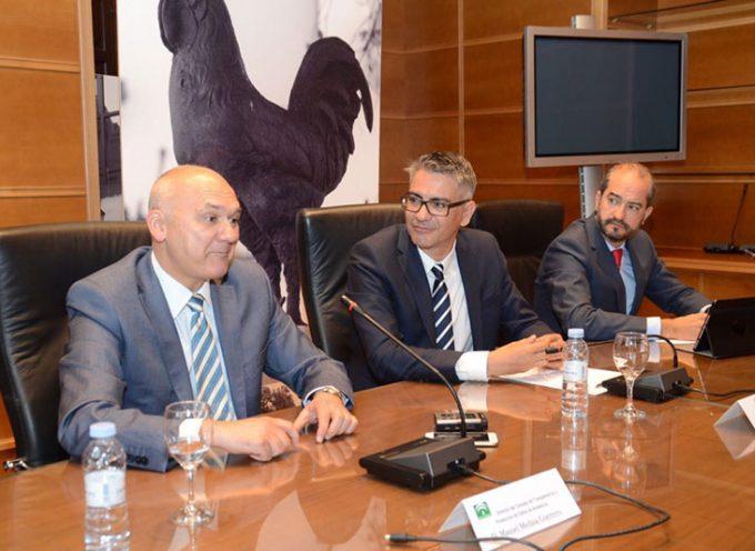 Pozoblanco apuesta por el gobierno abierto como base para la construcción del Plan estratégico Municipal