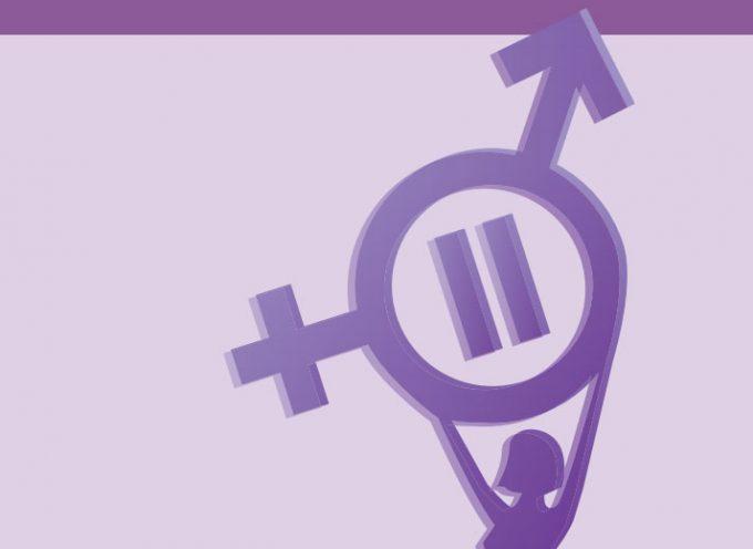 Un curso de Diputación para formar 'Promotoras/es para la Igualdad entre Mujeres y Hombres'