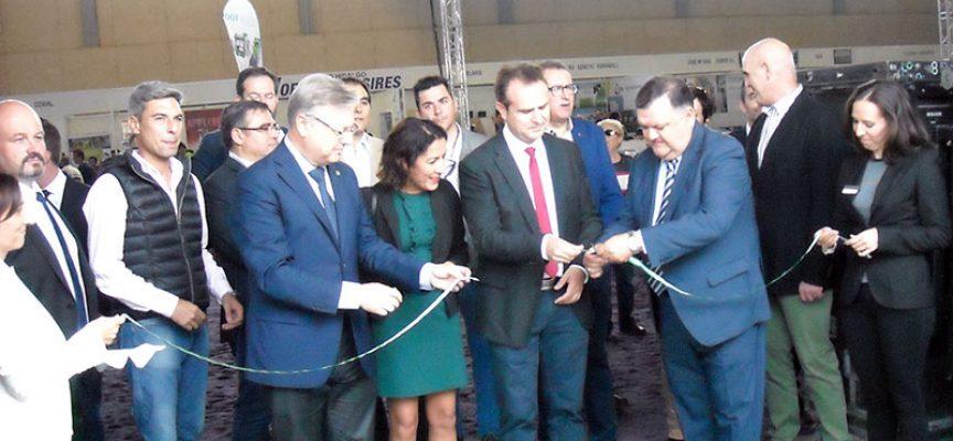 La IX Feria del Ganado Vacuno de Raza Frisona reúne a 13 ganaderías y 80 animales
