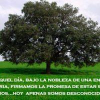 'Un nuevo ciclo', por Amalia Moreno