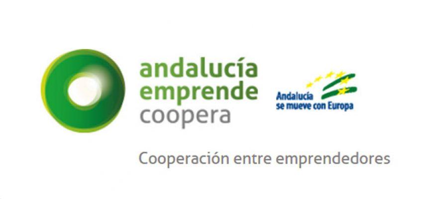 Presentación en Villanueva de Córdoba de la plataforma 'Andalucía Emprende Coopera'