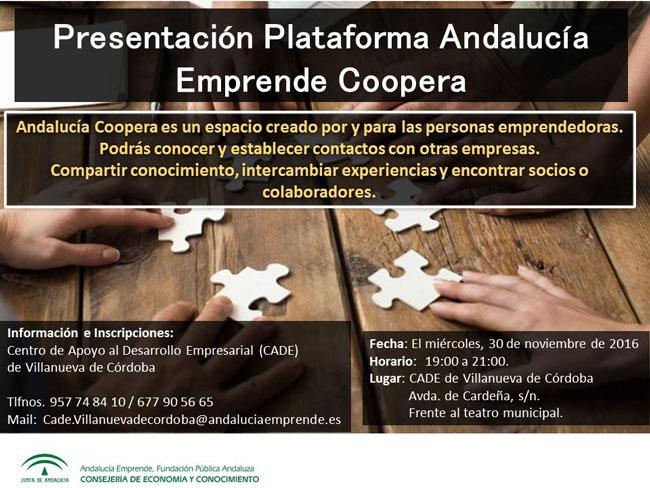 Plataforma Andalucía Emprende Coopera