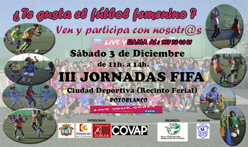 Festival FIFA