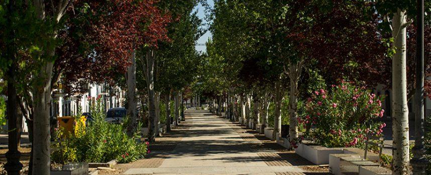 Torrecampo dedica una jornada al emprendimiento en el municipio