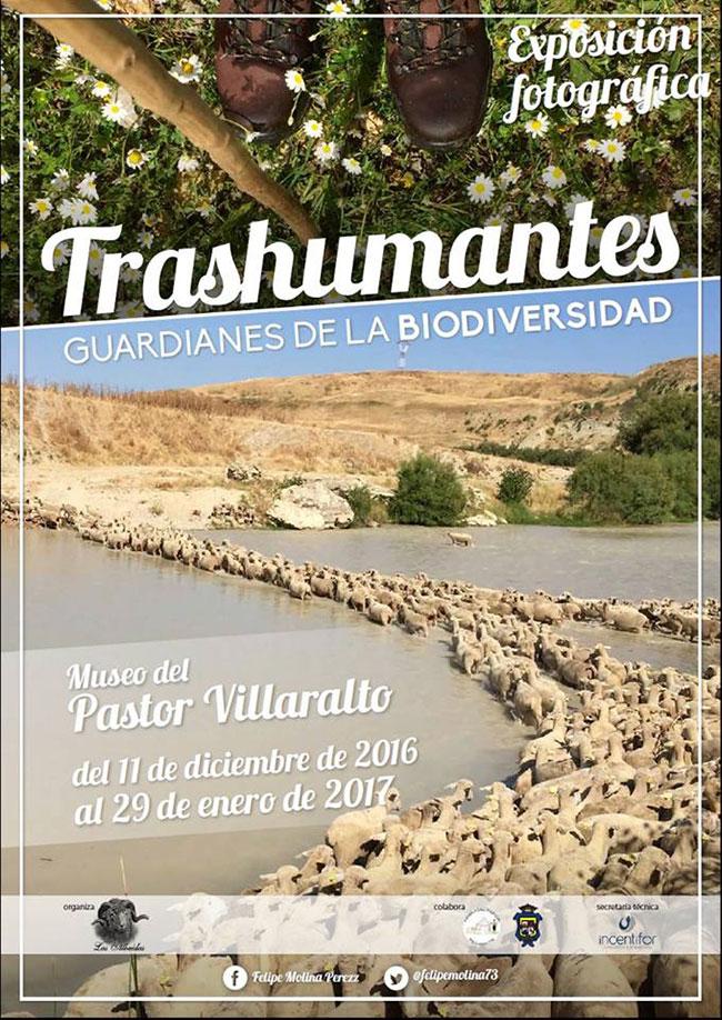 Trashumantes. GUARDIANES DE LA BIODIVERSIDAD