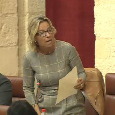 Según Albás, Ciudadanos ha conseguido que la Junta se comprometa a más contrataciones en el Hospital de Pozoblanco