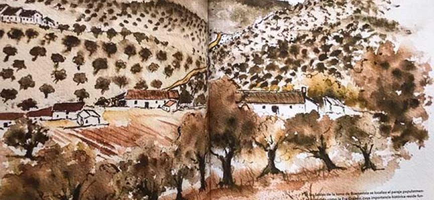 Hablando sobre el olivar de Los Pedroches en Dos Torres