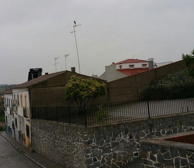 poste para nidos