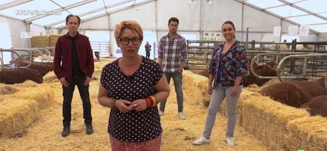 Feria del ganado