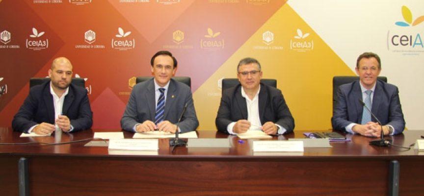 La UCO y el Ayuntamiento de Añora promueven la I Jornada 'Smart Rural Land'