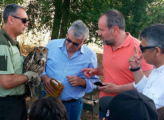 Medio Ambiente realiza  una suelta de ocho aves en el IFAPA de Hinojosa del Duque