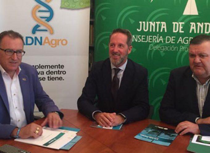 Los GDR de Córdoba se alían con Cajamar para fomentar el desarrollo, la innovación y el empleo en el medio rural