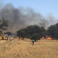 El alcalde de El Viso agradece la ayuda en la extinción de un incendio que ha arrasado 100 hectáreas