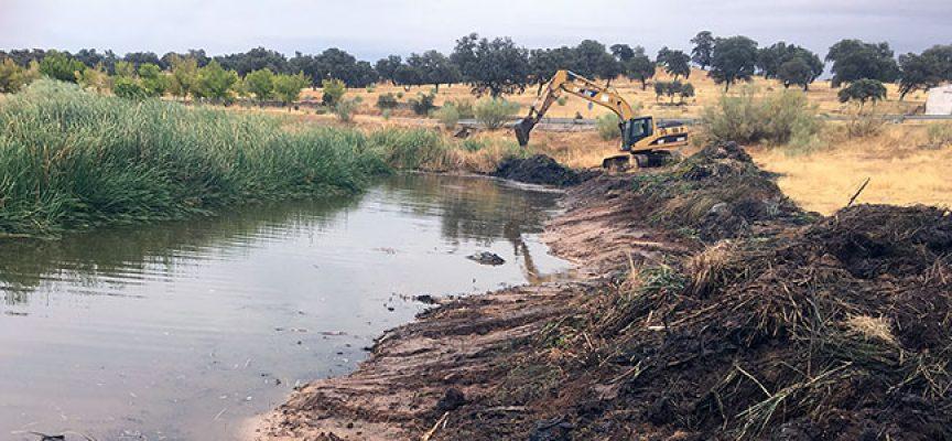 Limpieza del cauce del arroyo Santa María a su paso por Pedroche