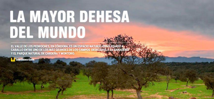 La revista 'CLUB + Renfe' dedica un reportaje a Los Pedroches