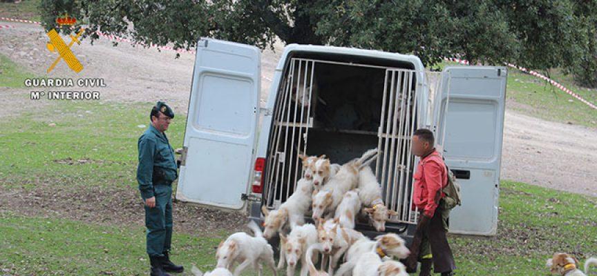 La Guardia Civil reactiva la 'Operación Sierra' para luchar contra el furtivismo