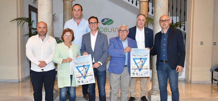 Unos 300 niños disputarán el Campeonato Andaluz de Balonmano infantil en Pozoblanco y Villanueva de Córdoba