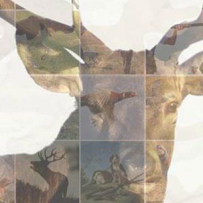 Llega la cuarta edición de la Feria de la Caza de Hinojosa del Duque