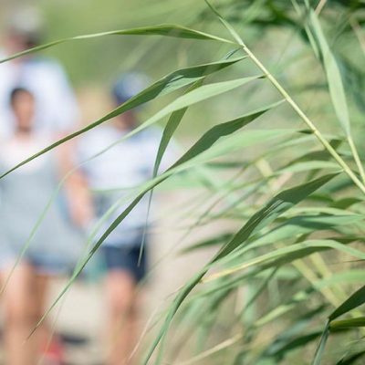 La Asociación Cívica Hinojoseña comienza con las actividades dentro del programa 'LIBERA, naturaleza sin basura'